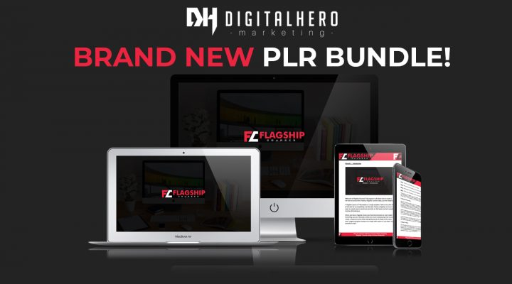 Video Walkthrough Of The Flagship Courses PLR Package